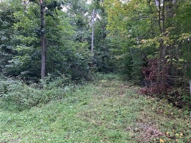 Boughner Road, Rock Creek, OH 44084 (MLS #4315839) :: TG Real Estate