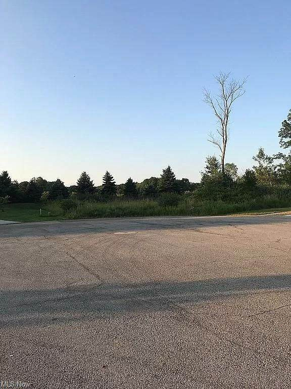 Joshua Point, Rootstown, OH 44272 (MLS #4316345) :: RE/MAX Trends Realty