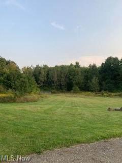 Orchard, Warren, OH 44484 (MLS #4316836) :: Select Properties Realty