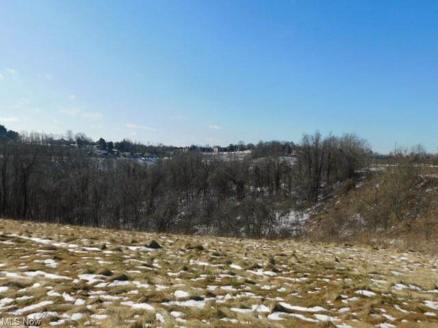 Sinclair, Steubenville, OH 43952 (MLS #4316920) :: RE/MAX Edge Realty