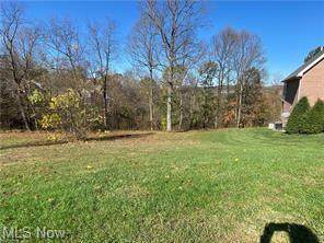 Pointe West Court, Parkersburg, WV 26101 (MLS #4319612) :: The Holly Ritchie Team