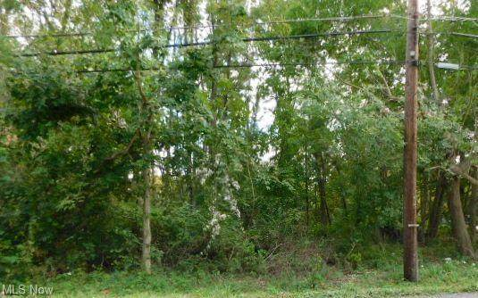 7411 Lewis Road, Olmsted Township, OH 44138 (MLS #4321210) :: The Holden Agency