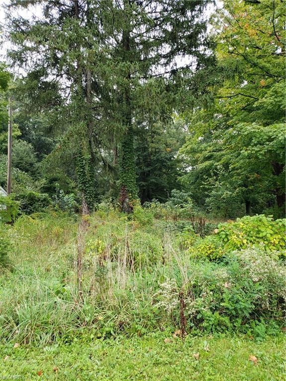 9091 Chillicothe Road - Photo 1