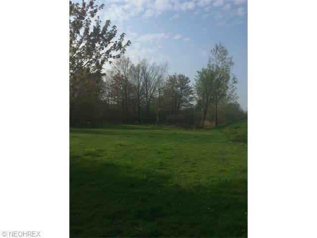 Cloverdale Rd, Seven Hills, OH 44131 (MLS #3706178) :: Tammy Grogan and Associates at Cutler Real Estate