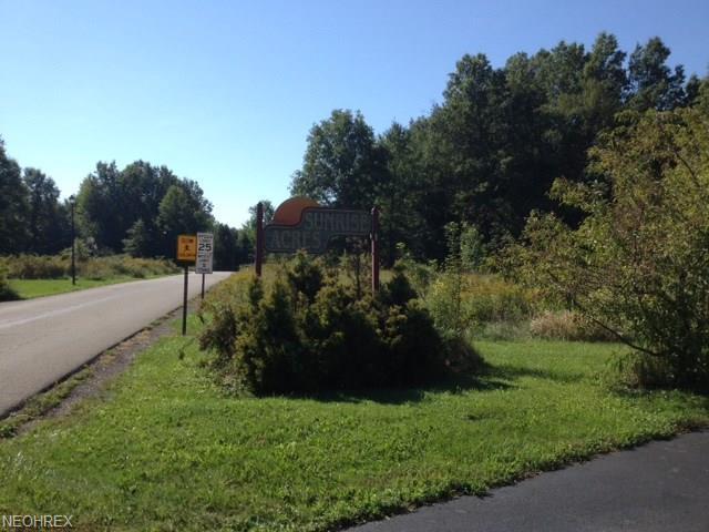 Sunrise Ave, Orwell, OH 44076 (MLS #3847497) :: The Crockett Team, Howard Hanna