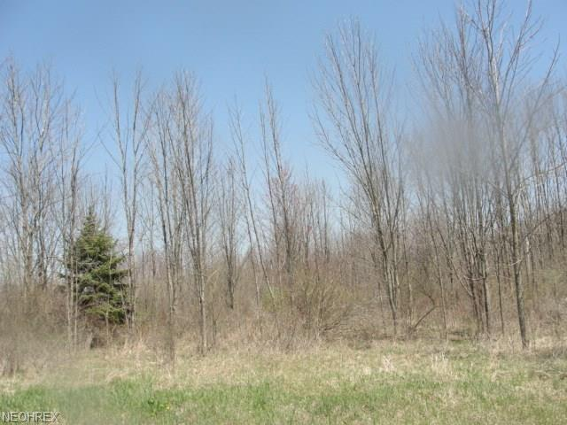 Crawford Road, Homerville, OH 44235 (MLS #3878656) :: RE/MAX Valley Real Estate