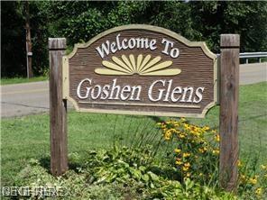 23 Goshen Glens Dr SE, New Philadelphia, OH 44663 (MLS #3885920) :: Keller Williams Chervenic Realty