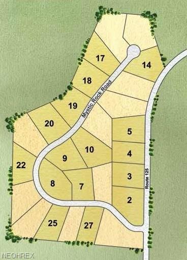 #14 Mystic-Woods Mystic Rock Rd, Columbiana, OH 44408 (MLS #3950841) :: Keller Williams Chervenic Realty