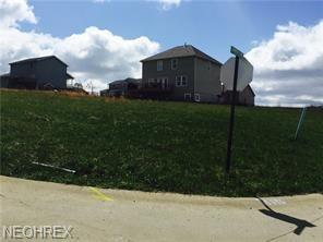 Allison Ave, St. Clairsville, OH 43950 (MLS #3969029) :: Keller Williams Chervenic Realty