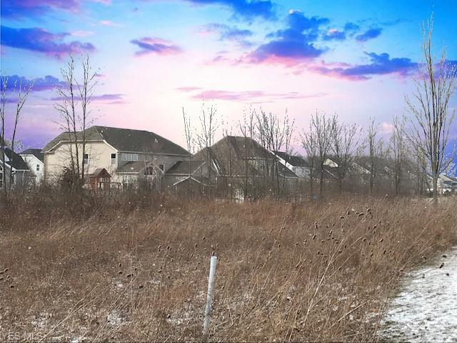French Creek Rd, Avon, OH 44011 (MLS #4073844) :: RE/MAX Edge Realty