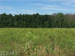 Vandemark & Speith Rd, Litchfield, OH 44253 (MLS #4077433) :: RE/MAX Edge Realty