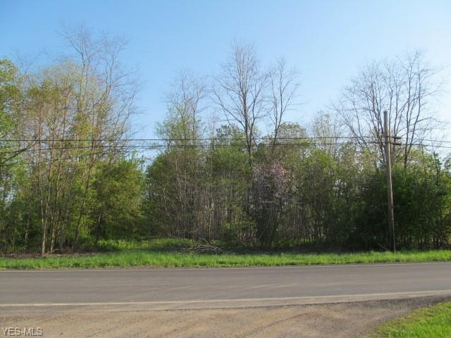 Middle Ridge Road, Madison, OH 44057 (MLS #4079803) :: RE/MAX Valley Real Estate