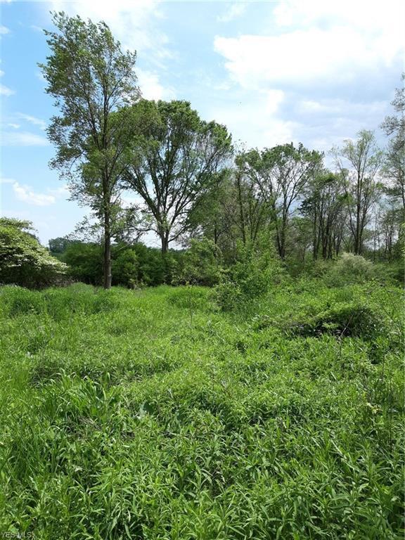 6450 Mud Lake Rd, Westfield, OH 44217 (MLS #4082633) :: RE/MAX Valley Real Estate