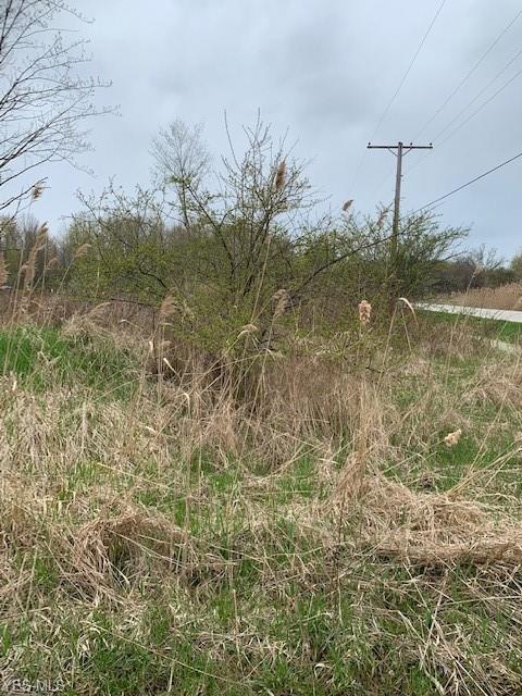 State Route 167, Jefferson, OH 44047 (MLS #4090945) :: The Crockett Team, Howard Hanna