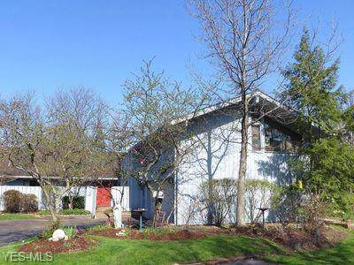 491 Concord Downs Path, Aurora, OH 44202 (MLS #4132461) :: RE/MAX Trends Realty