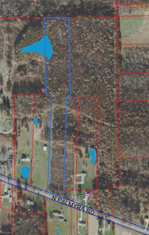 N Palmyra Road, North Jackson, OH 44451 (MLS #4157595) :: RE/MAX Valley Real Estate