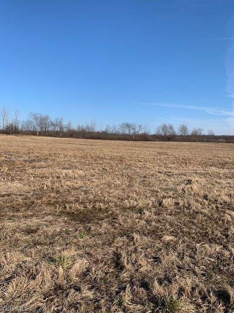 State Route 534, West Farmington, OH 44491 (MLS #4160805) :: Keller Williams Chervenic Realty