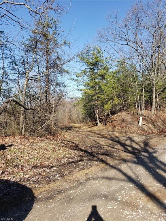 6015 Shay Ridge Road, New Matamoras, OH 45767 (MLS #4164959) :: The Crockett Team, Howard Hanna