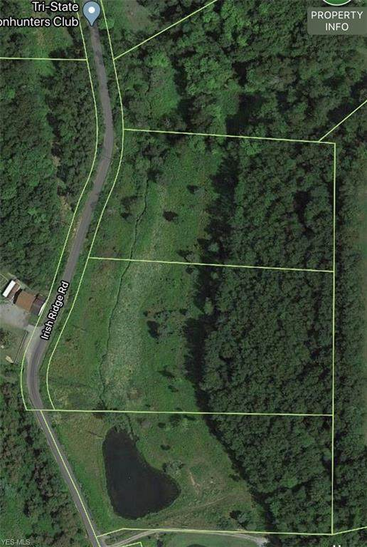 Irish Ridge Rd, East Liverpool, OH 43920 (MLS #4174969) :: RE/MAX Valley Real Estate