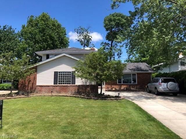 5851 Ashcroft Drive, Mayfield Heights, OH 44124 (MLS #4187863) :: The Holly Ritchie Team