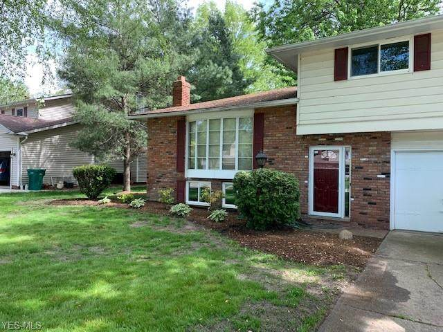 7806 Hoover Court, Mentor, OH 44060 (MLS #4191743) :: RE/MAX Edge Realty
