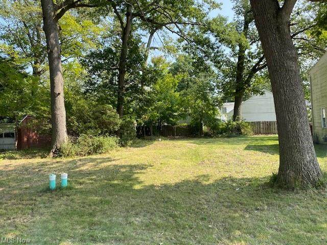 185 Forest Boulevard, Avon Lake, OH 44012 (MLS #4226067) :: The Art of Real Estate