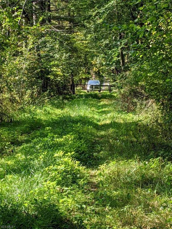 Lot 27 Palmyra Road, Milton, OH 44429 (MLS #4227046) :: Tammy Grogan and Associates at Cutler Real Estate