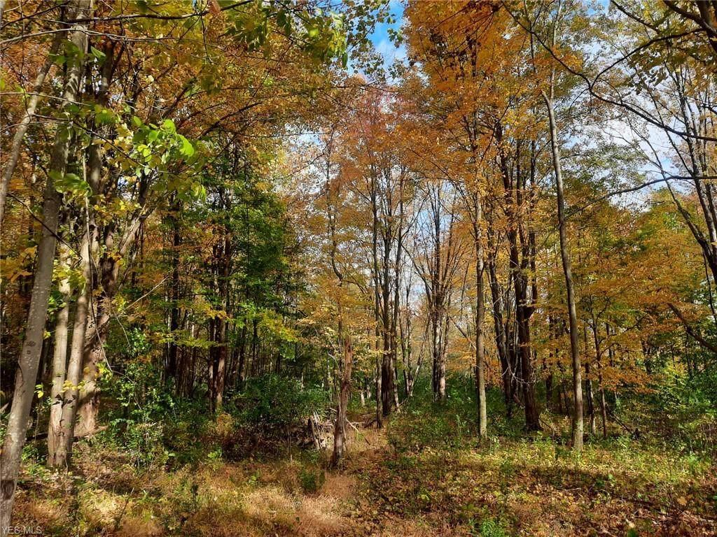 Cedar Road - Photo 1