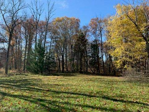 652 Boston Mills Road, Hudson, OH 44236 (MLS #4234007) :: Select Properties Realty