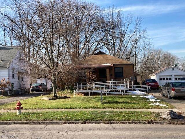 294 Chestnut Street, Painesville, OH 44077 (MLS #4244228) :: Keller Williams Legacy Group Realty