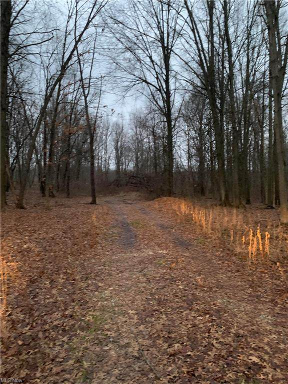 10008 Cable Line Road, Diamond, OH 44412 (MLS #4248318) :: TG Real Estate