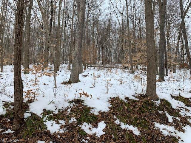 French Hill Road NW, Dover, OH 44622 (MLS #4257193) :: Tammy Grogan and Associates at Cutler Real Estate