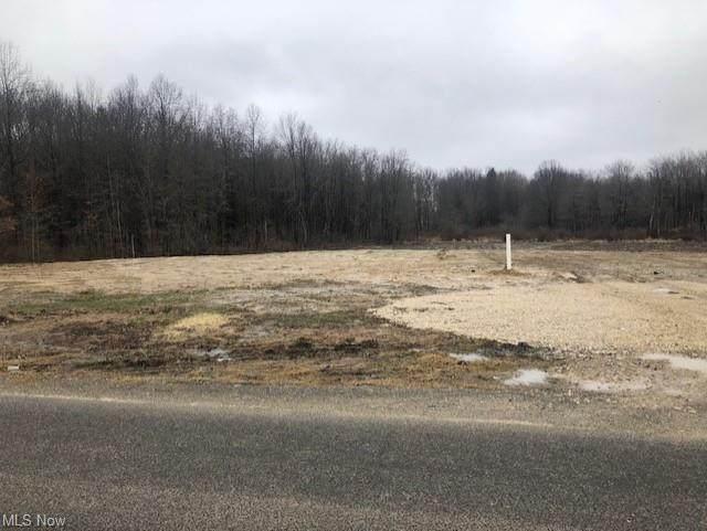 Lynn Road, Ravenna, OH 44266 (MLS #4259654) :: Keller Williams Chervenic Realty