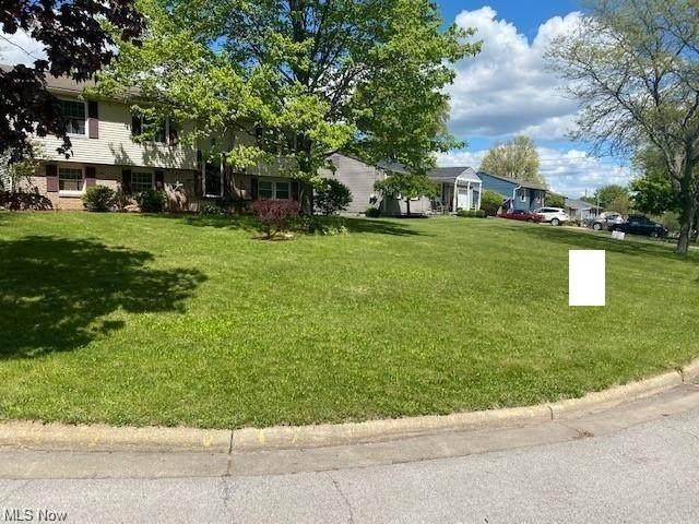 948 Florida Avenue, McDonald, OH 44437 (MLS #4282612) :: TG Real Estate