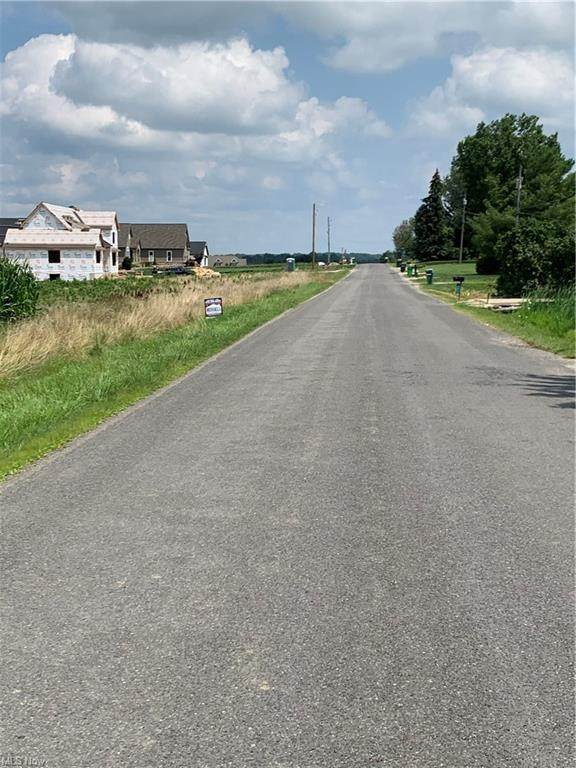 Lyonswood Drive, Hinckley, OH 44233 (MLS #4294934) :: Tammy Grogan and Associates at Keller Williams Chervenic Realty