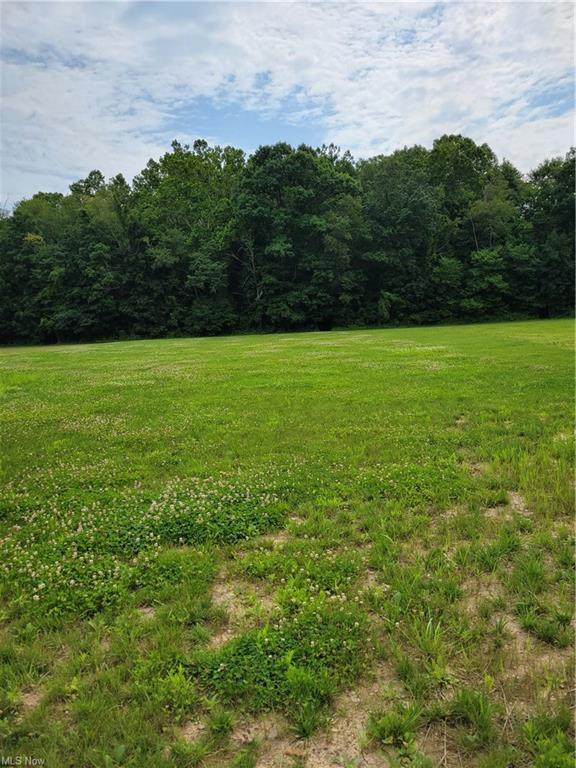 Abbeyville Road, Valley City, OH 44280 (MLS #4301438) :: The Holden Agency