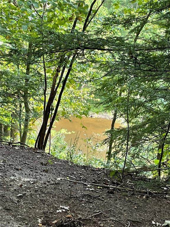 Lot 4 Mirna Road, Harpersfield, OH 44041 (MLS #4307785) :: The Holly Ritchie Team