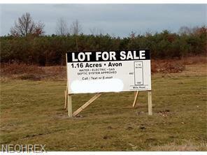 Mills Road, Avon, OH 44011 (MLS #3783974) :: RE/MAX Edge Realty