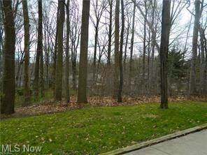 Rustic Terrace Drive, Munroe Falls, OH 44262 (MLS #3899460) :: Tammy Grogan and Associates at Keller Williams Chervenic Realty