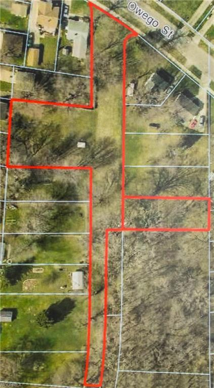 Owego St, Painesville, OH 44077 (MLS #3921763) :: Tammy Grogan and Associates at Cutler Real Estate
