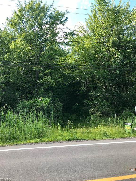 15406 Rock Creek Road, Thompson, OH 44086 (MLS #4105593) :: RE/MAX Valley Real Estate