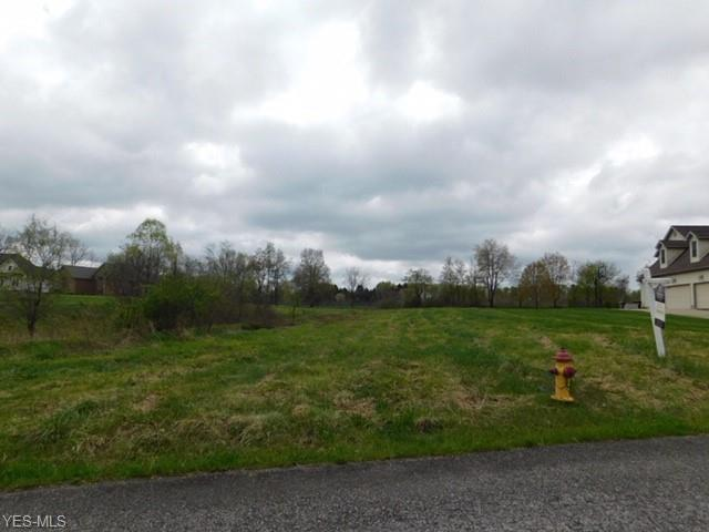 Sageberry Dr, North Lima, OH 44452 (MLS #3763359) :: RE/MAX Valley Real Estate