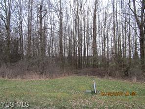 Leffingwell Drive, Orwell, OH 44076 (MLS #3879349) :: RE/MAX Valley Real Estate
