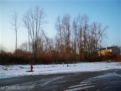 Squirrel Hollow Street NE, Canton, OH 44704 (MLS #3467522) :: The Crockett Team, Howard Hanna