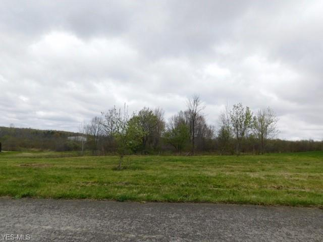 Sageberry Drive, North Lima, OH 44452 (MLS #3763368) :: RE/MAX Edge Realty