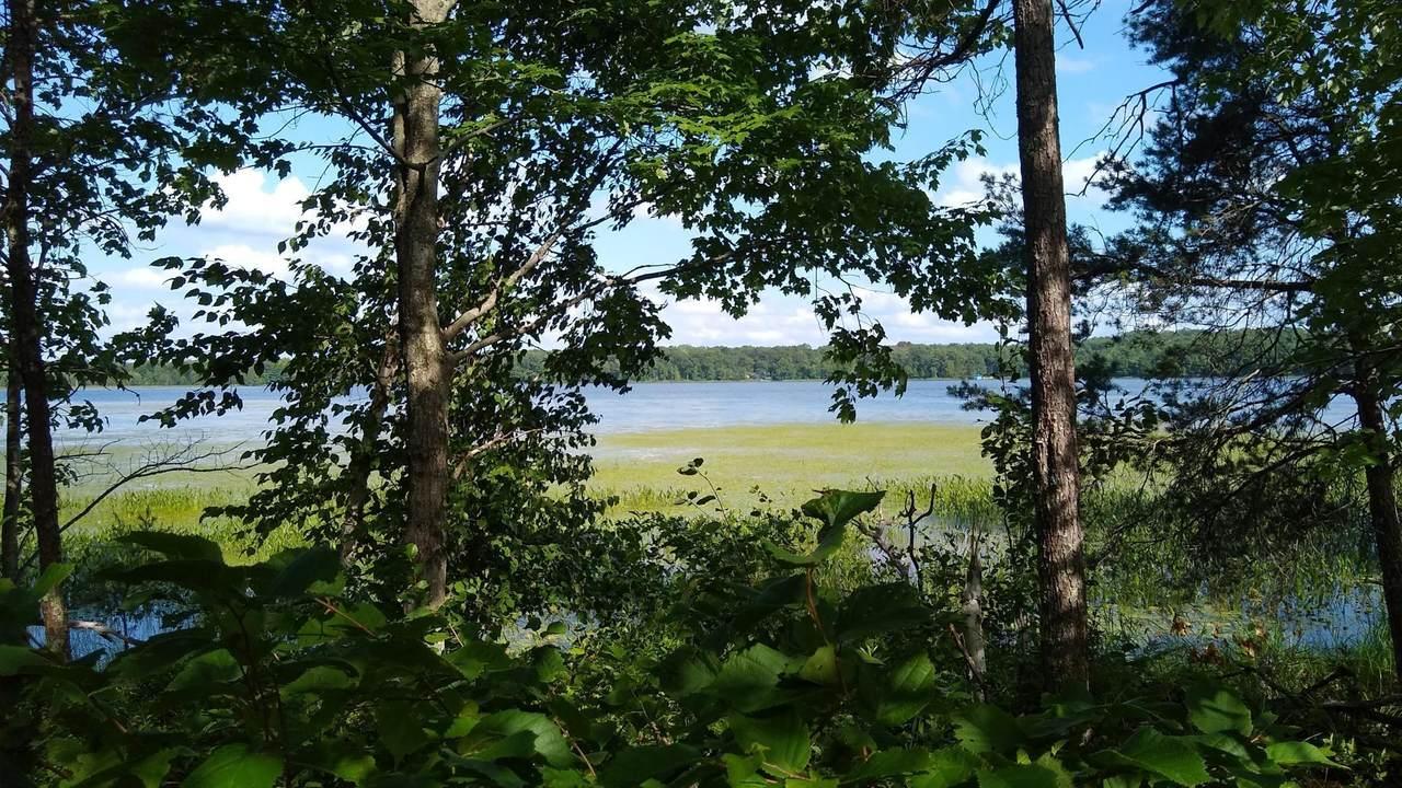 0 (Lot 10) Bass Lake Road - Photo 1