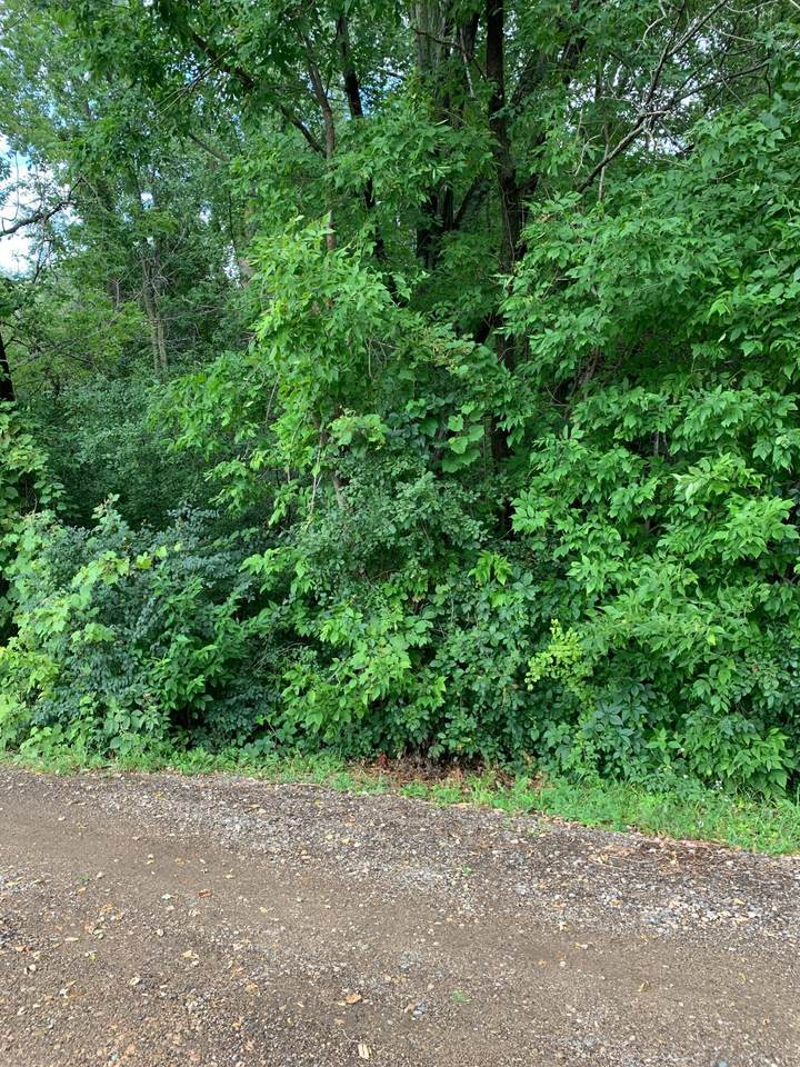 Lot 5 199th Street - Photo 1