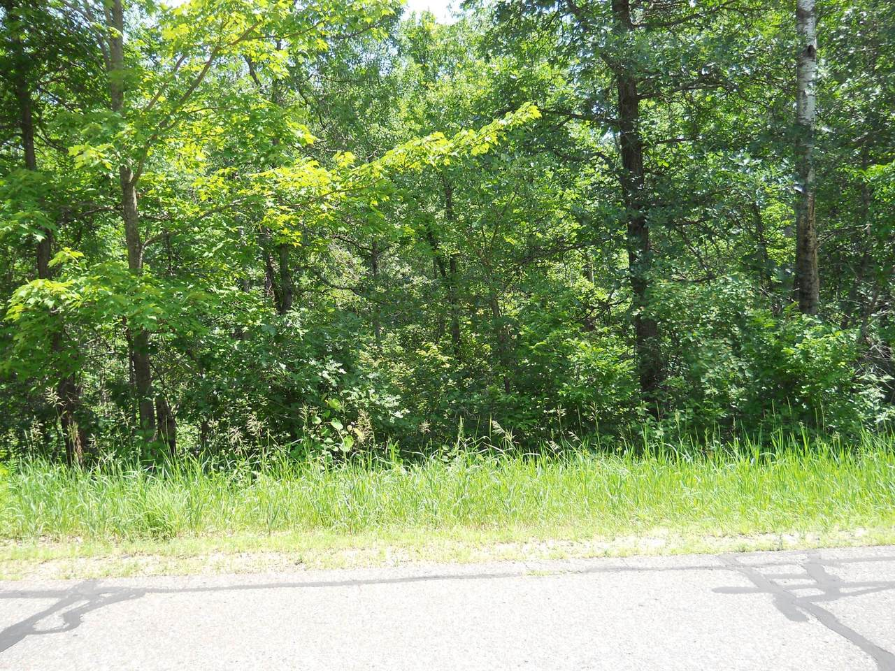 Lot 14 Ranchette Drive - Photo 1