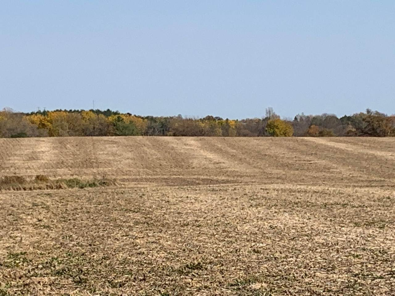 TBD County Rd 5 (38.36Ac) - Photo 1
