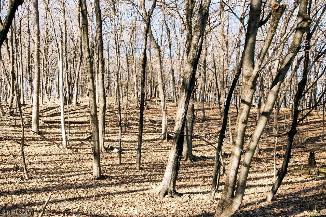 1025 Wildhurst Trail - Photo 1